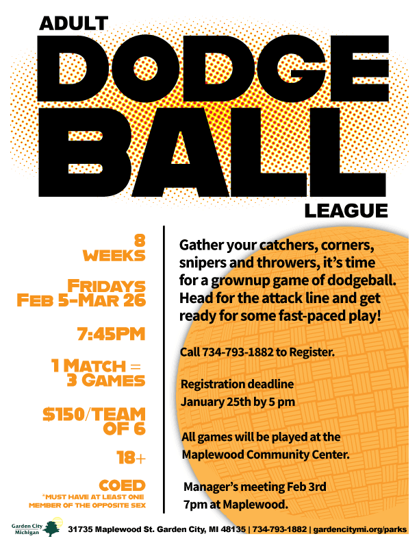Adultdodgball